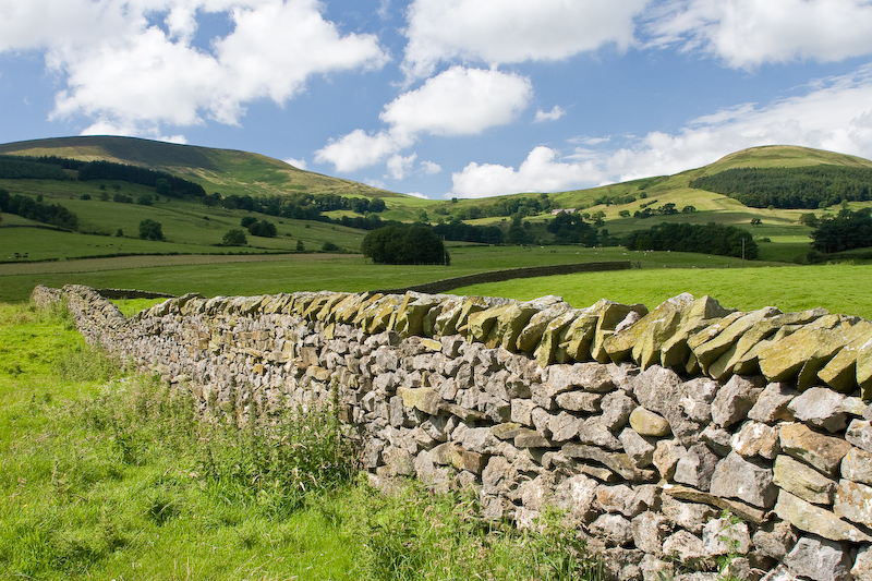 Bowland dry stone wall (credit G Cooper)