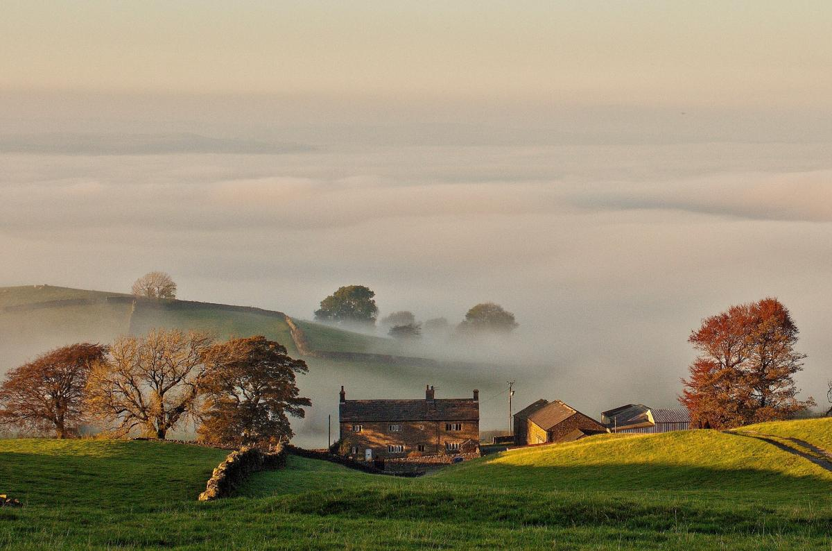 Ribble Valley autumn fog, near Downham by Andrew Cowell
