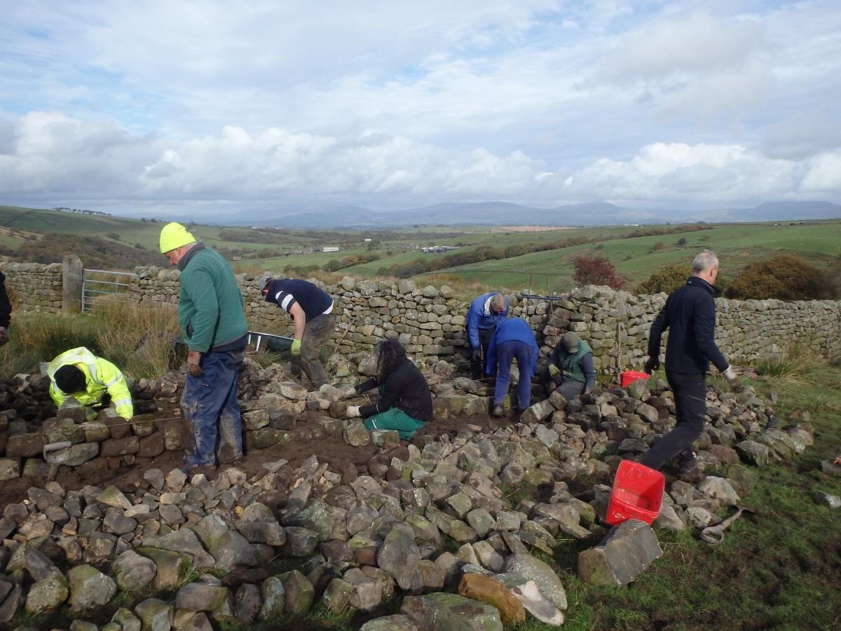 Roeburndale walling course (credit Forest of Bowland AONB)