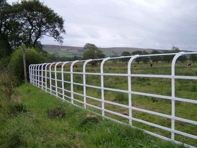 White railings (credit to Forest of Bowland AONB)