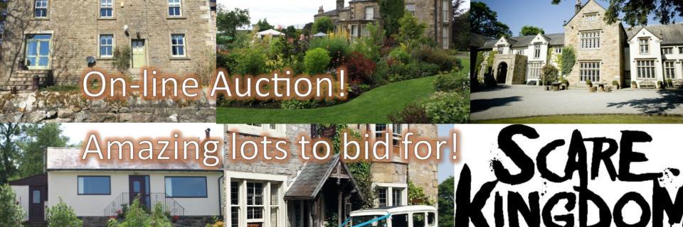 composite image showing auction prizes
