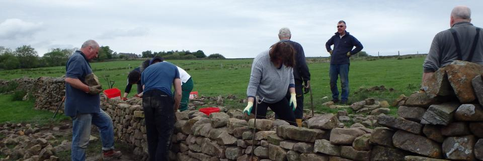 Dry stone walling course (Forest of Bowland AONB)