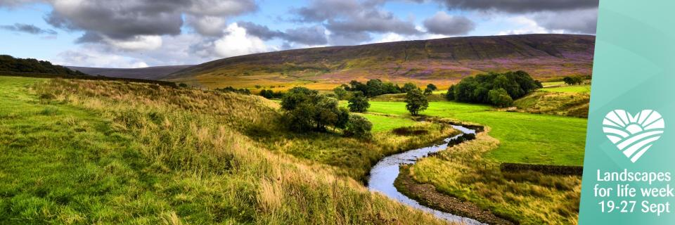 Landscapes for Life Bowland image