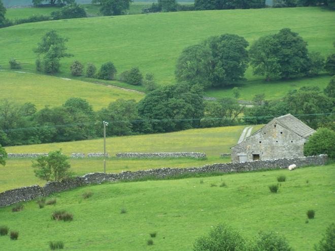 Bell Sykes Hay Meadows