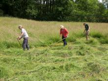 Scything Training